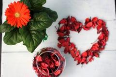Blume und Vase mit den rosafarbenen Blumenblättern und Herzen von den Blumenblättern Lizenzfreie Stockbilder