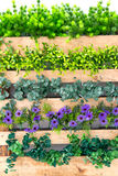 Blume und Zaun stockfotografie