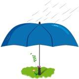 Blume unter einem Regenschirm Lizenzfreie Stockbilder