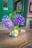 Blume von Asturien Lizenzfreie Stockbilder