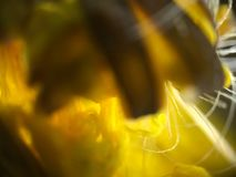 Blume - Zoom 400x zu den Anlagen Stockbild