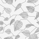 BlumenÑattern Stockbild