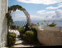 Blumen über dem Meer Stockfoto