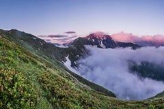Blumen über den Wolken Einer der Vulkane von Kamchatka Vulkane von Kamchatka faszinieren lizenzfreie stockbilder