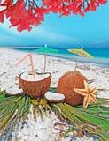 Blumen über Kokosnüssen Lizenzfreies Stockfoto