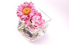 blumen in glas stockfoto - bild: 42160489, Best garten ideen