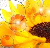 Blumen-Abstraktion Lizenzfreies Stockfoto