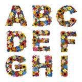 Blumen-Alphabet Stockfotografie