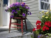 Blumen außerhalb des Hauses lizenzfreie stockfotografie