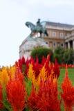 Blumen außerhalb des ungarischen National Gallery Lizenzfreie Stockfotografie