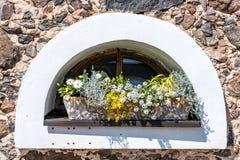 Blumen auf altem Fenster Stockbild
