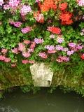 Blumen auf alter Brücke Stockfotos