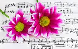Blumen auf Blattmusik Lizenzfreie Stockfotos