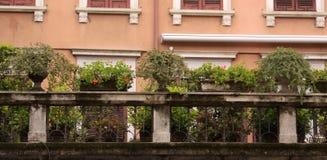 Blumen auf dem Balkon lizenzfreie stockfotos