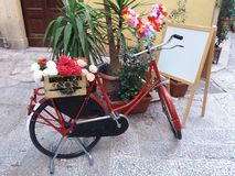 Blumen auf dem Fahrrad Lizenzfreie Stockbilder