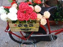 Blumen auf dem Fahrrad Stockfotos