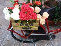 Blumen auf dem Fahrrad Stockbild