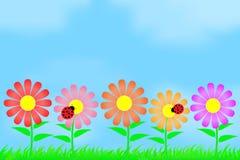 Blumen auf dem Hintergrund des Himmels. Stockbild