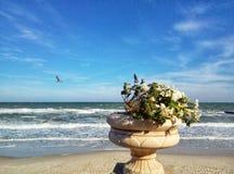 Blumen auf dem Hintergrund des Meeres lizenzfreie stockbilder