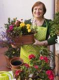 Blumen auf dem Portal Lizenzfreie Stockbilder