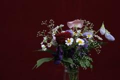 Blumen auf dem purpurroten bakcround Lizenzfreie Stockfotos