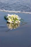 Blumen auf dem Sand Stockbild