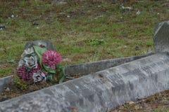 Blumen auf dem vergessenen Grab stockfotos