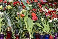 Blumen auf den Barrikaden Stockbilder