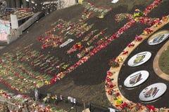 Blumen auf den Barrikaden von Kiew Stockbilder