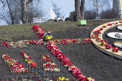 Blumen auf den Barrikaden von Kiew Lizenzfreies Stockbild