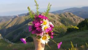 Blumen auf den Bergen stockfotos