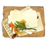 Blumen auf den Retro- Papieren Lizenzfreies Stockfoto