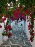 Blumen auf den schmalen Straßen vom Mittelmeer Stockfotos
