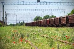 Blumen auf der Eisenbahn Stockfotografie