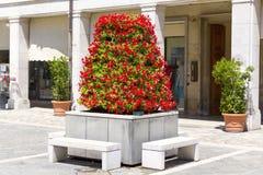 Blumen auf der Straße Stockfoto
