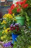 Blumen auf der Wand Stockfotografie