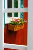 Blumen auf einem Fensterbrett Lizenzfreie Stockbilder