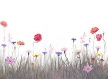 Blumen auf einem Gebiet Lizenzfreies Stockbild