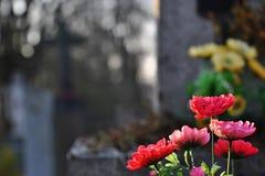 Blumen auf einem Grab Stockfotografie