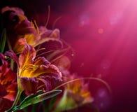 Blumen auf einem roten Hintergrund. Mit Exemplarplatz Stockfotografie