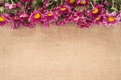 Blumen auf einer alten Leinwand Stockbild