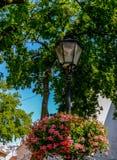 Blumen auf einer Lampe Lizenzfreie Stockbilder