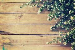 Blumen auf hölzernem Beschaffenheitshintergrund mit copyspace Abbildung der roten Lilie Lizenzfreie Stockfotos