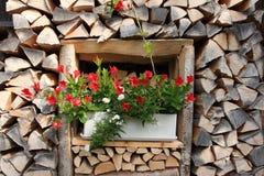Blumen auf hölzerner Wand Stockfoto