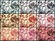 Blumen auf Niederlassungen Stockfotos