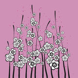 Blumen auf Rose farbigem Hintergrund Lizenzfreie Stockfotos