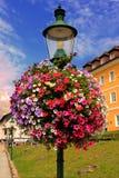 Blumen auf Straßenlaterne Lizenzfreie Stockfotografie