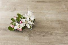 Blumen auf Tabelle Lizenzfreies Stockbild