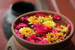 Blumen auf Wasser Lizenzfreies Stockfoto