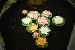 Blumen auf Wasser Lizenzfreie Stockfotografie